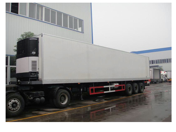20gp and 40gp Refrigerator Trailer Inside Temperature Can Be -5 Degree to -15 Degree